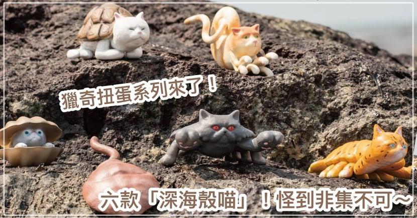 獵奇扭蛋系列!超稀有「深海殼喵」海底物種,6款預購開賣起跑... 網暴動:必須集!!!