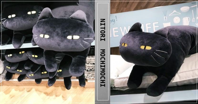 搶翻天熱銷品回來了!宜得利『黑貓QQ抱枕』再次開放預購!揪團來帶黑貓回家吧~