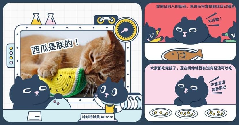 【Kuroro不可思議的貓科學】第十七話 - 貓咪 3 種吃貨類型大公開!你家是哪種吃法呢?