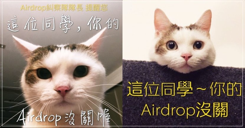 「同學Airdrop沒關喔」等車收到肥貓梗圖爆紅,網狂開drop想收:乾!怎是醜照!
