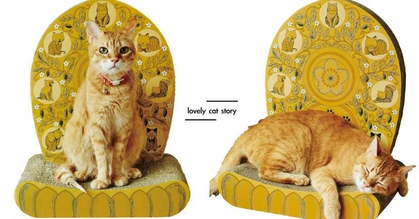喵皇駕到還不跪下!日本推出金光閃閃「貓皇椅」,坐上去「聖氣逼人」帥翻天啦~