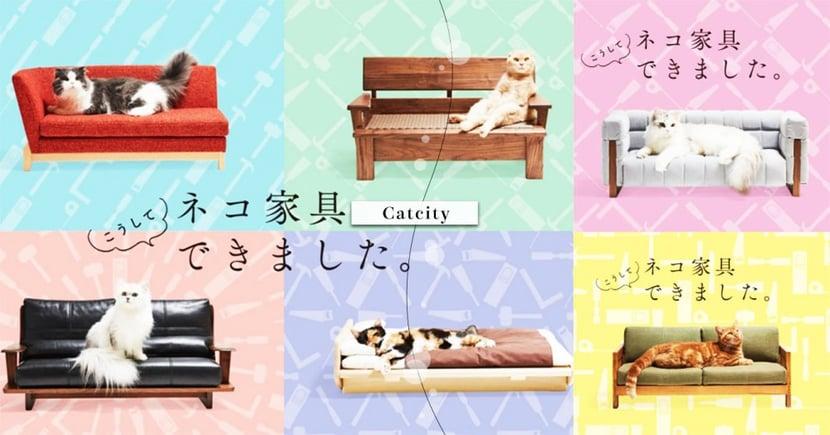這會不會太高級!日本東京「貓傢俱展」即將開跑,專屬喵沙發、小床真4太犯規惹R~