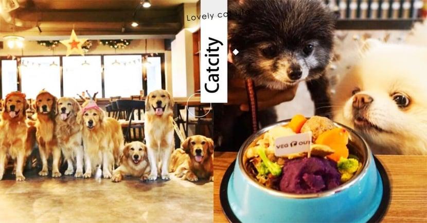 【寵物友善餐廳】帶毛孩一起耍廢!蘆洲 VEG OUT 精緻早午餐,連寵物也有專屬午茶呢~