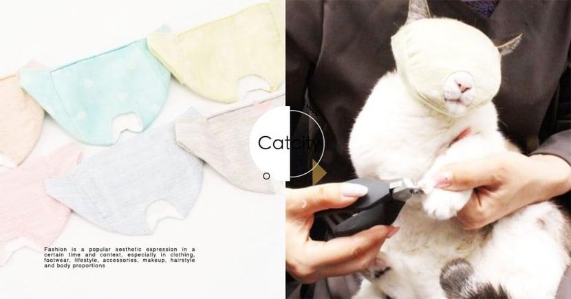超狂!日本推出「貓咪剪指甲神器」全罩只留嘴巴~笑翻網友:好像內褲套頭