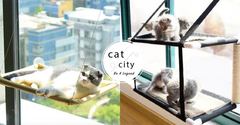 【貓吊床推薦】超豪華觀景台!6 款「貓吊床」竟分上下舖也太狂