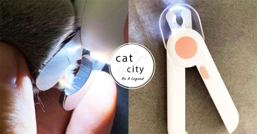 【新手貓奴】照得到血管!新手貓奴的『剪指甲神器』,再也不用擔心剪到貓受傷了!