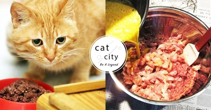 【生食所需用品】初學者該準備什麼?製作貓生食的必備 8 種工具!