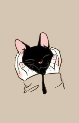 貓桌布,手機桌布