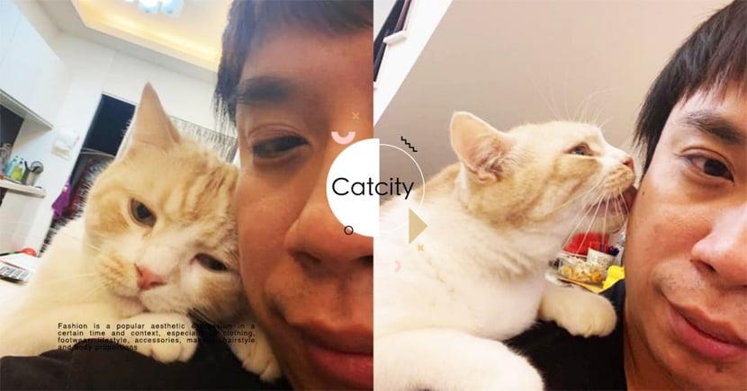 男主人與橘貓親密合照,「親臉撒嬌」讓正宮傻眼:小三貓無誤!