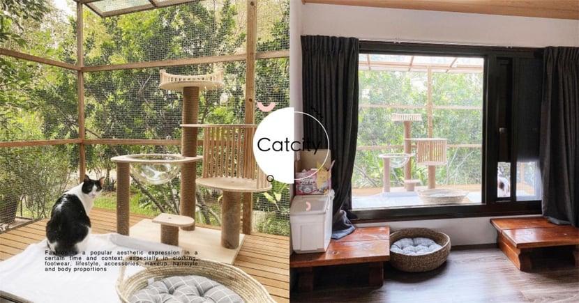 帶兩貓回家住!超狂老爸花萬元蓋「豪華貓屋」,房內竟能連結戶外花園