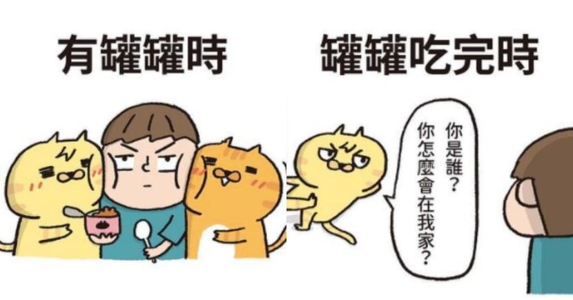 養貓才知道的 8 件事!「喵嗚公園」超爆笑插畫,貓奴看完好有感!