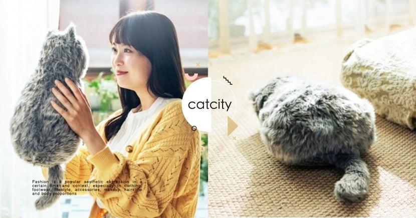 好想養貓啊!日本商家推出「貓型抱枕」萌翻,還自帶「呼嚕聲+體溫」超逼真!