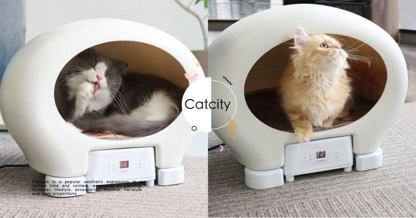 【貓咪消暑】怕貓中暑?日本商家「冷氣貓屋」可調溫14-40度,冬天秒變暖屋超方便!