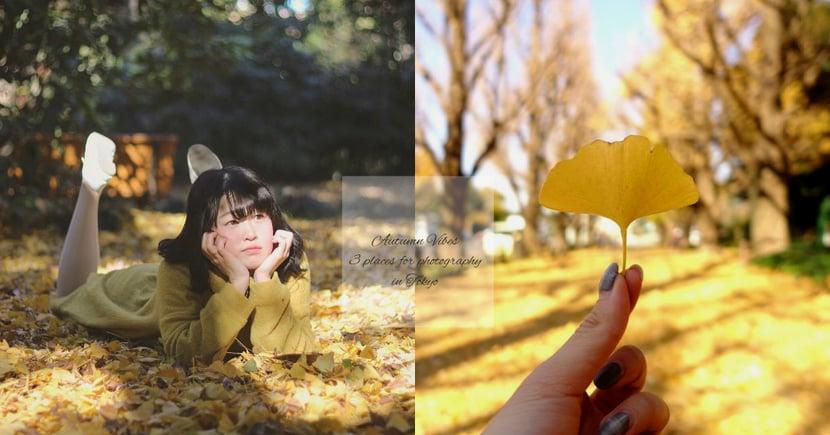 抓緊秋天的尾巴~即使銀杏掉下了也很漂亮,推介3個東京銀杏打卡熱點!