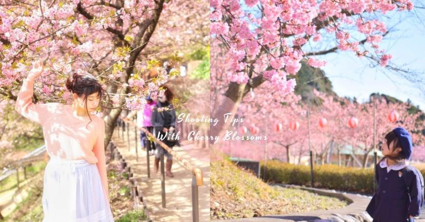 必學!櫻花季9個拍照小貼士,櫻花+角度就可以影到「偽女神」超讚相啦〜