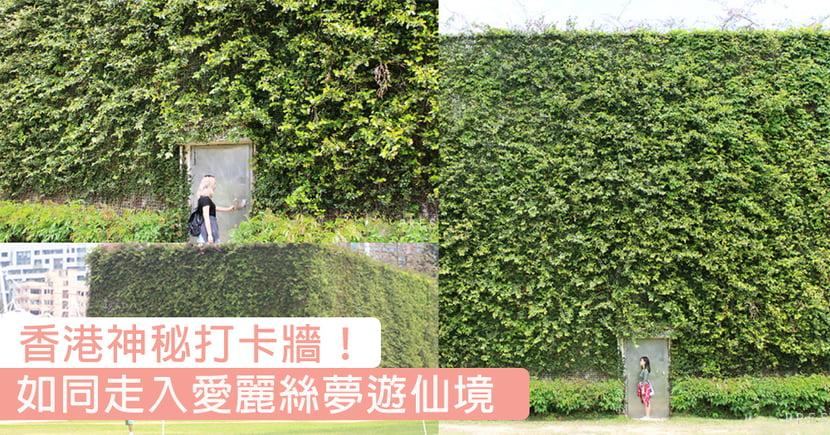走入愛麗絲夢遊仙境!香港超大幅綠化牆身,打卡一流嘅神秘靚景〜
