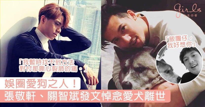 娛圈愛狗之人!張敬軒、關智斌發文悼念13歲愛犬「飯團」離世:我暫時找不到方法對付那撕心裂肺的痛。
