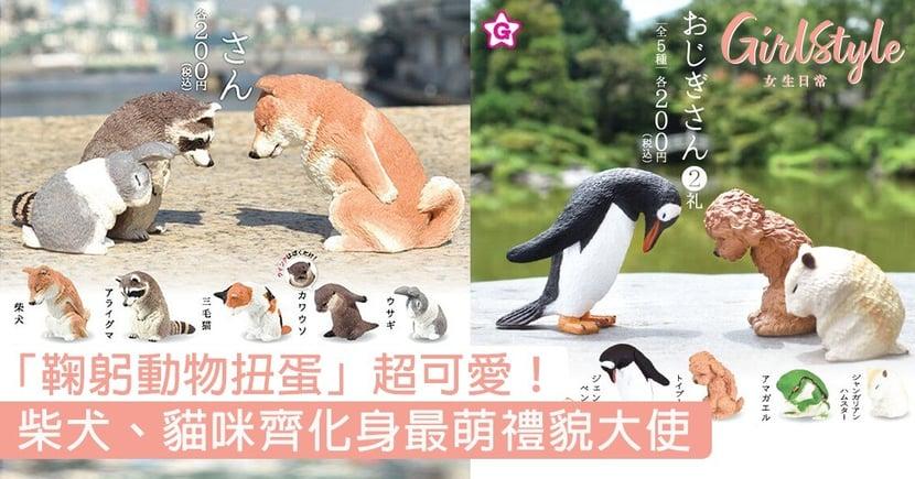 日本「鞠躬動物扭蛋」超可愛!柴犬、貓咪、狐狸齊化身最萌禮貌大使〜