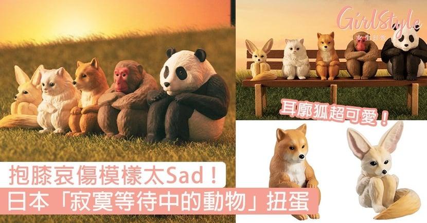 耳廓狐超可愛!日本最新「寂寞等待中的動物」扭蛋,抱膝哀傷模樣讓人想摸頭安慰!