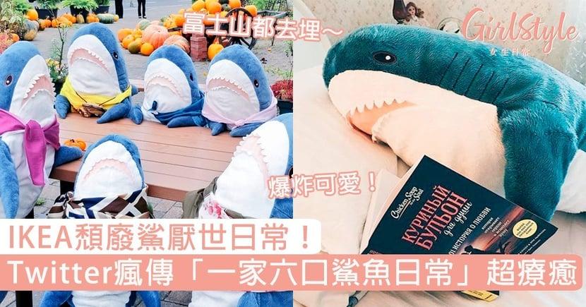 頹廢鯊厭世日常!日本Twitter瘋傳「一家六口IKEA鯊魚」超療癒,登富士山、逛市場爆炸可愛!