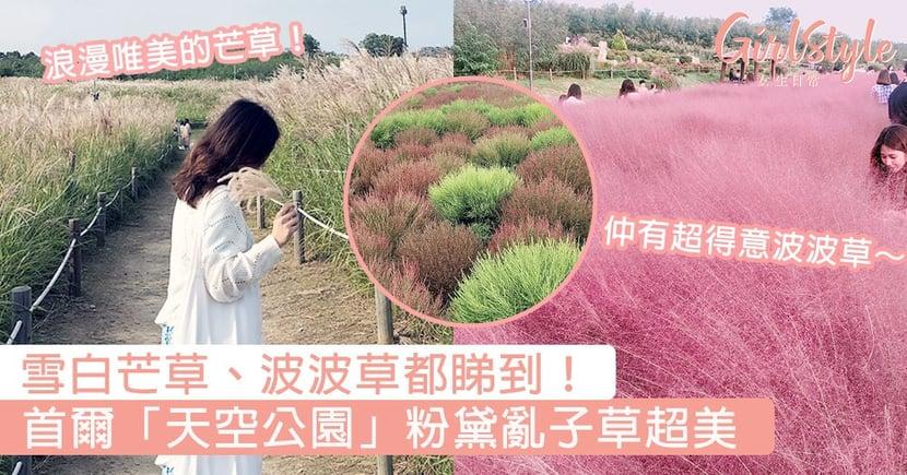 雪白芒草、波波草都睇到!首爾「天空公園」粉黛亂子草,浪漫唯美的芒草令女生少女心爆發!