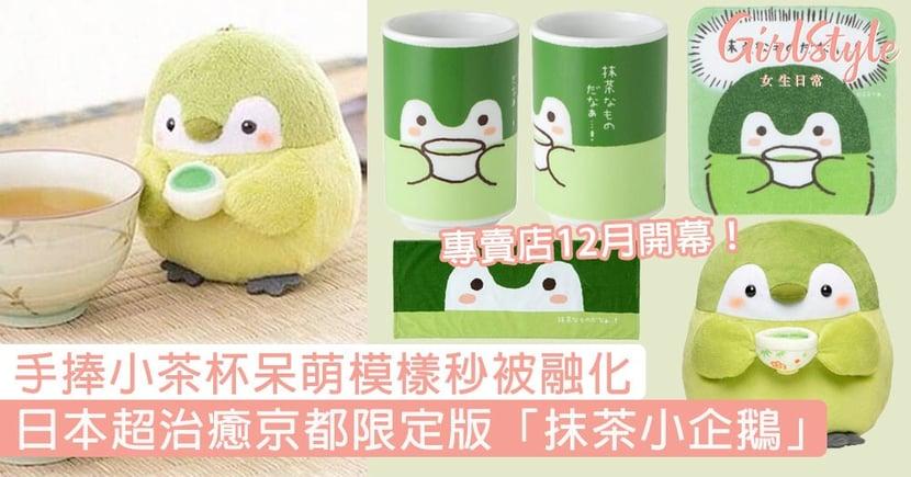 專賣店12月開幕!日本超治癒京都限定版「抹茶小企鵝」,手捧小茶杯的呆萌模樣秒被融化!