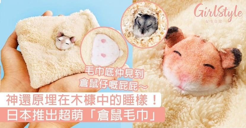 神還原埋在木槺中的睡樣!日本推出超萌「倉鼠毛巾」,毛巾底仲見到倉鼠仔嘅屁屁~