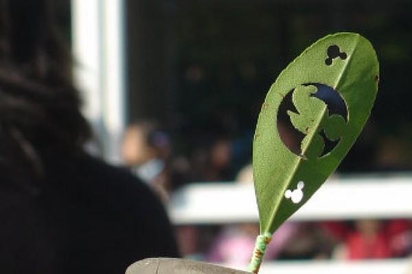 東京迪士尼「超美剪影樹葉」,
