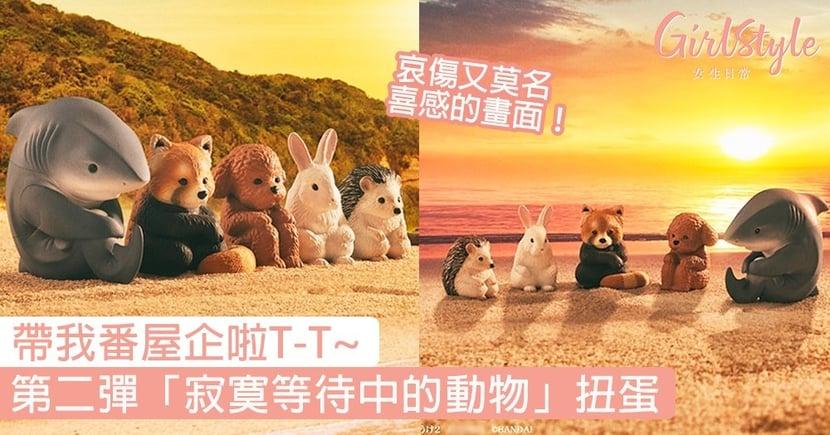 日本第二彈「寂寞等待中的動物」扭蛋!小熊貓、刺蝟抱膝委屈模樣,讓人想一秒帶回家!