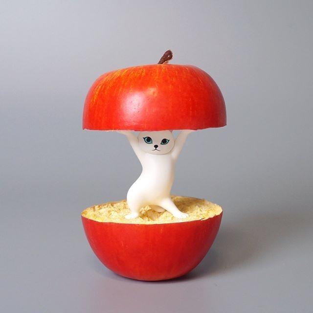 日本貓咪筆座扭蛋twitter@meetissai創意玩法倒立頂蘋果
