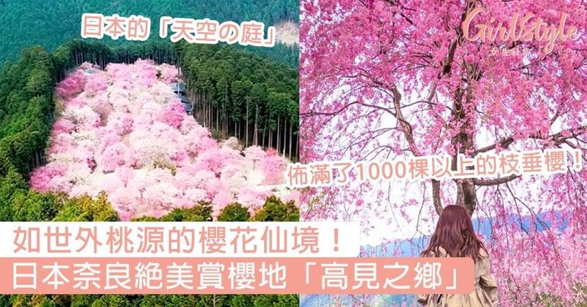 【日本櫻花】奈良絕美賞櫻地「高見之鄉」!如世外桃源的櫻花仙境,此生必去一次這賞櫻地朝聖~