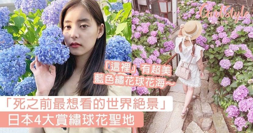 【繡球花2020】日本4大賞繡球花聖地,日本人稱這裡是:死之前最想看的世界絶景~