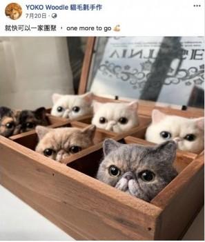DIY手作, 貓奴, 貓帽子, 貓毛, 貓毛手作, 貓貓造型