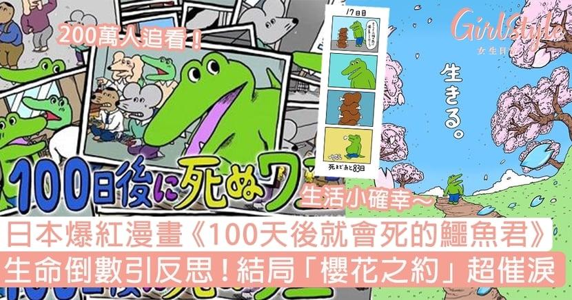 日本爆紅漫畫《100天後就會死的鱷魚君》!生命倒數引反思,結局櫻花之約超催淚!
