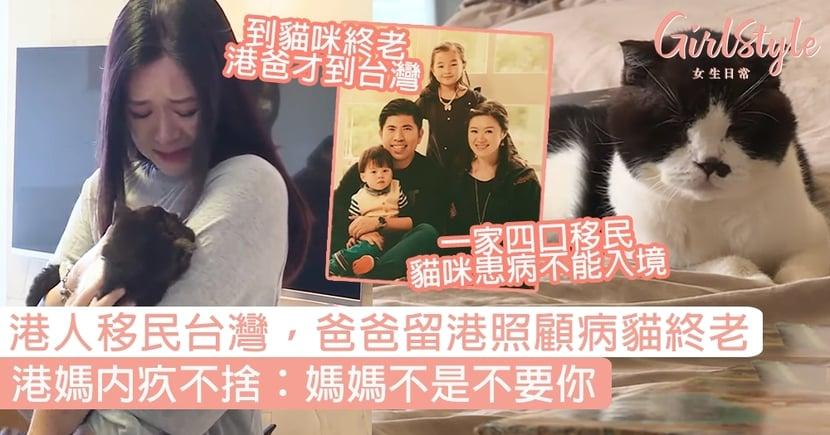 港人一家移民台灣,爸爸留港照顧病貓終老!港媽內疚不捨:媽媽不是不要你