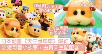 日本動畫《PUI PUI 天竺鼠車車》爆紅!治癒可愛小故事,由真天竺鼠配音?