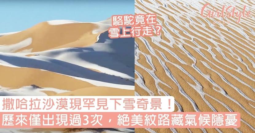 撒哈拉沙漠罕見下雪!歷來僅出現過3次的奇景,絕美交錯紋路藏氣候隱憂