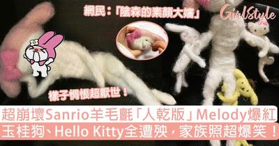 Sanrio羊毛氈「人乾」Melody超崩壞!玉桂狗、Hello Kitty全遭殃,家族照爆笑!
