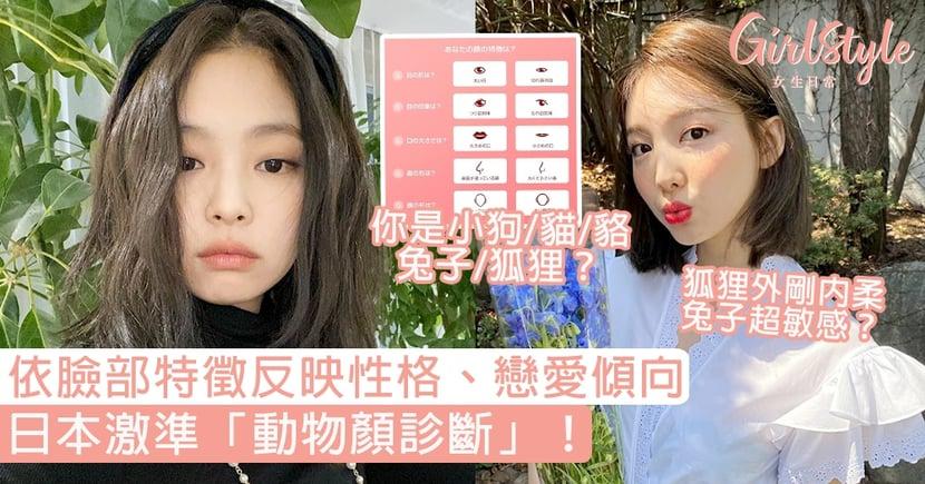 日本激準「動物顏診斷」!依臉部特徵反映性格、戀愛傾向,你是小狗/貓/貉/兔子/狐狸?