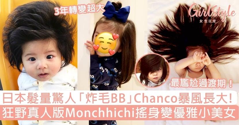 日本髮量驚人「炸毛BB」Chanco暴風長大了!狂野真人版Monchhichi變優雅小美女!