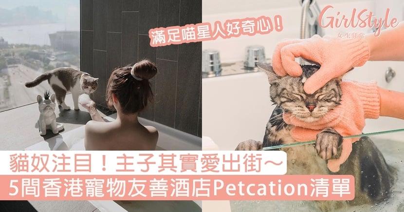 喵星人其實愛出街!5間香港寵物友善酒店清單~即睇主子Petcation假日好去處