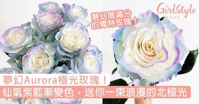夢幻Aurora極光玫瑰!仙氣紫藍漸變色花瓣,送你一束浪漫的北極光