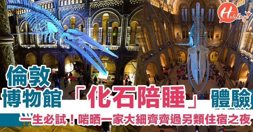 人生必試!英國人氣「恐龍陪睡」體驗 博物館過夜唔再係夢!