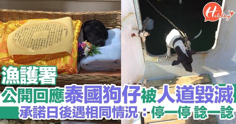 漁護署終公開回應人道毀滅泰國誤上貨船狗狗一事 會認真檢視處理程序同方式:唔會以相同方式處理