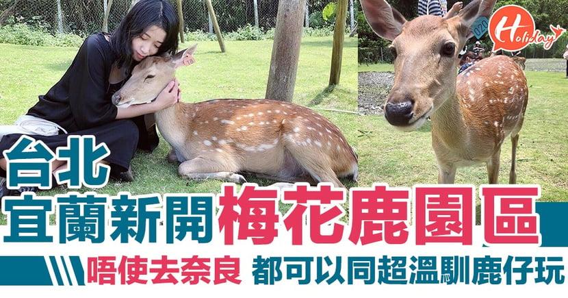 唔使再去奈良喇~台北宜蘭新景點,同小鹿斑比超近距離接觸!