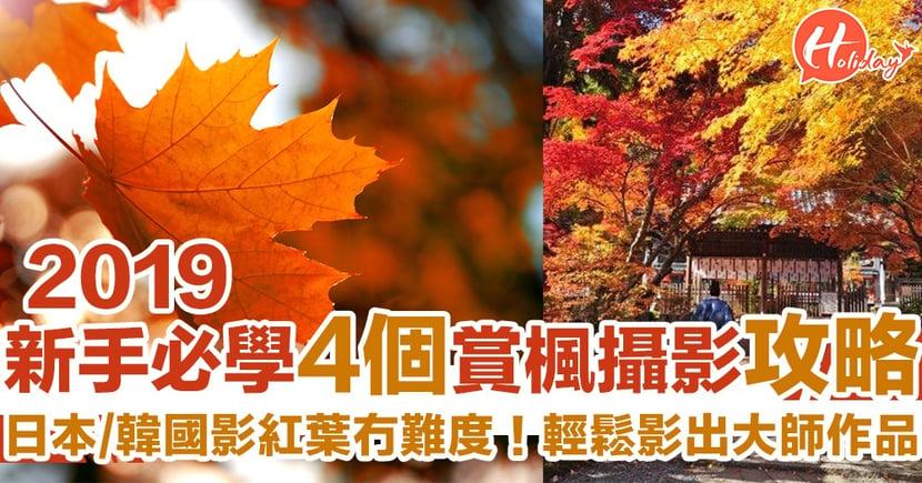 影楓冇難度!新手必學4個日本韓國紅葉攝影攻略 輕鬆影出大師作品