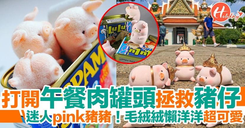 拯救迷人pink豬豬!打開午餐肉罐頭 內藏可愛肥豬仔~