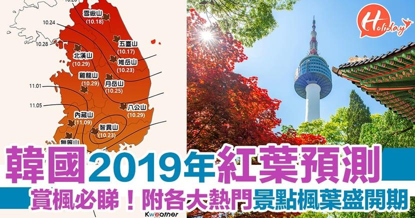 賞楓必睇!2019韓國紅葉預測 各大熱門景點楓葉盛開期一覽