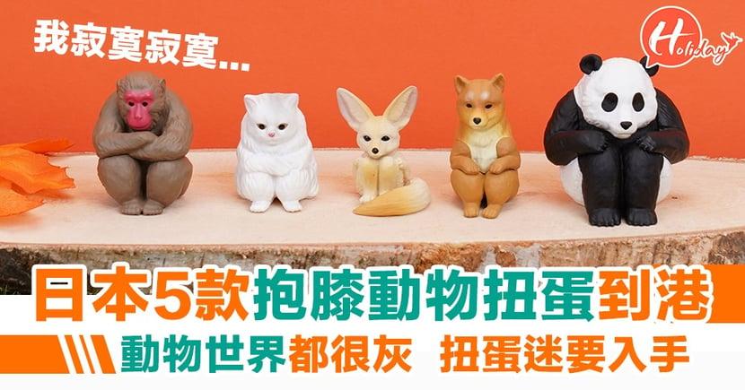 【最新扭蛋】日本最新扭蛋到港!5款抱膝動物扭蛋 「寂寞寂寞就好」