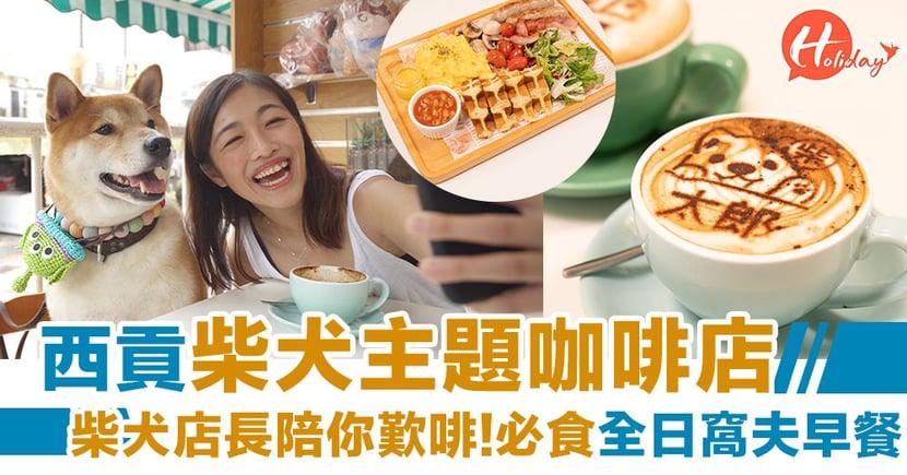 【區區遊】西貢柴犬咖啡店!柴犬店長陪你歎啡   必食全日窩夫早餐